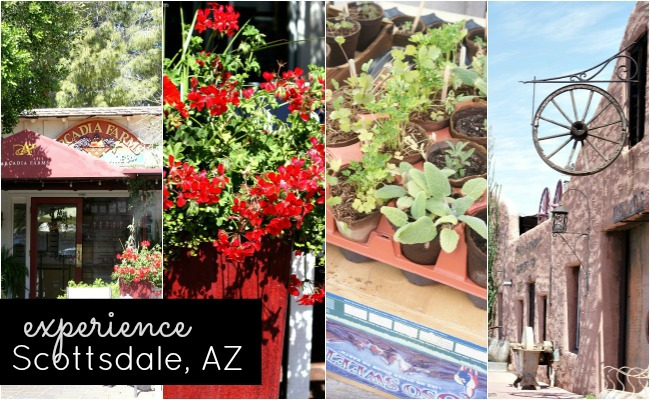 Experience Scottsdale AZ { www.experiencescottsdale.com }