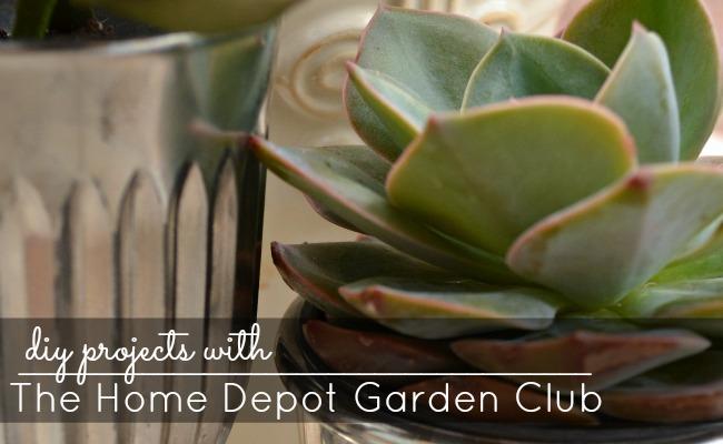 Home Depot Garden Club #DigIn