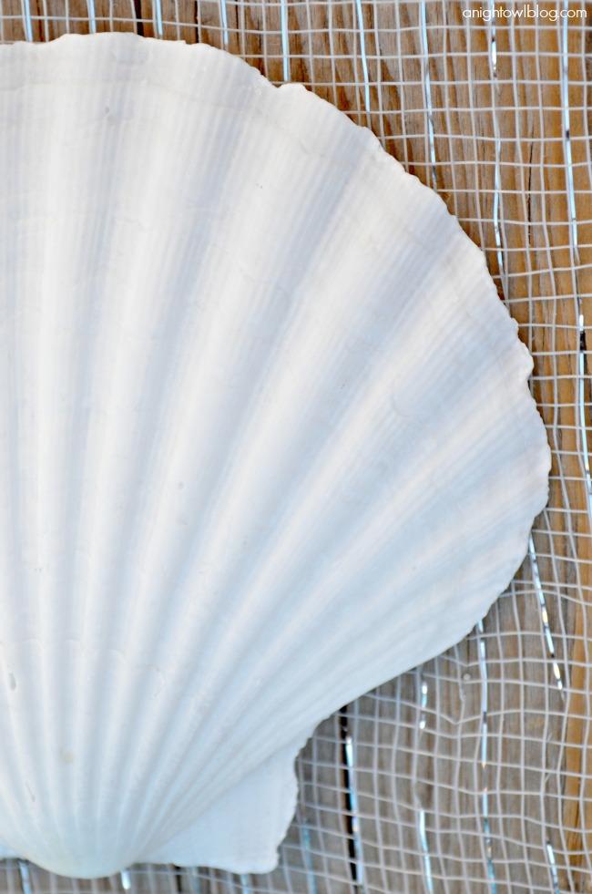 Large Natural Baking Shells from World Market #SummerFun