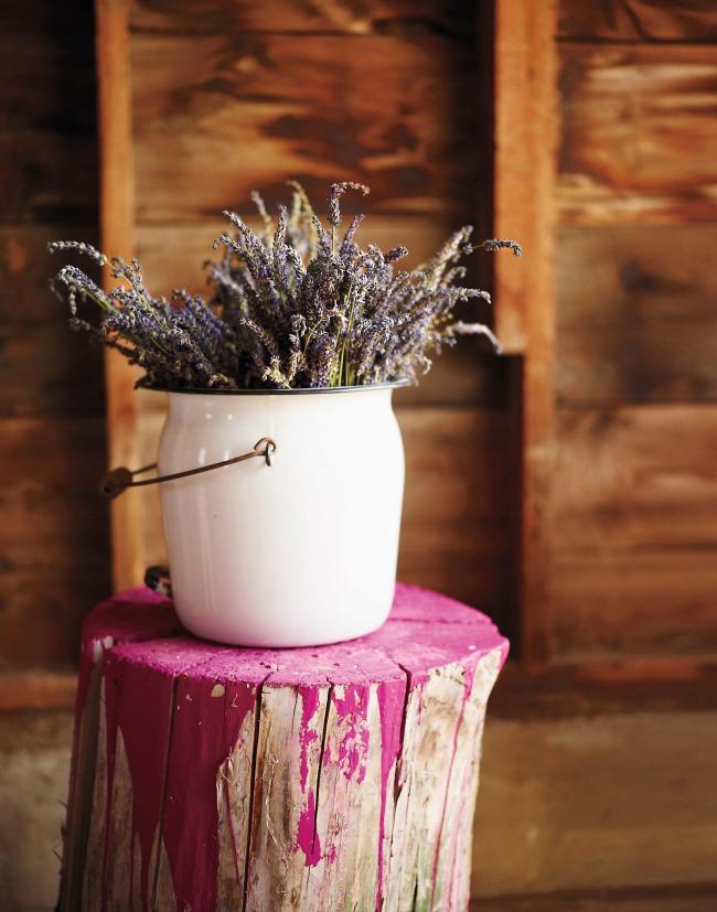 Color splashed stump - Martha Stewart Living