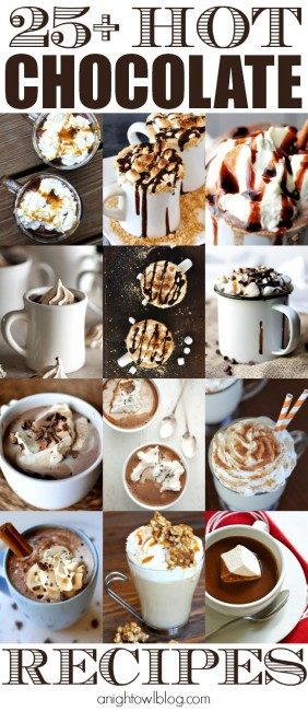 25+ Hot Chocolate Recipes - Pumpkin, Peppermint and MORE!