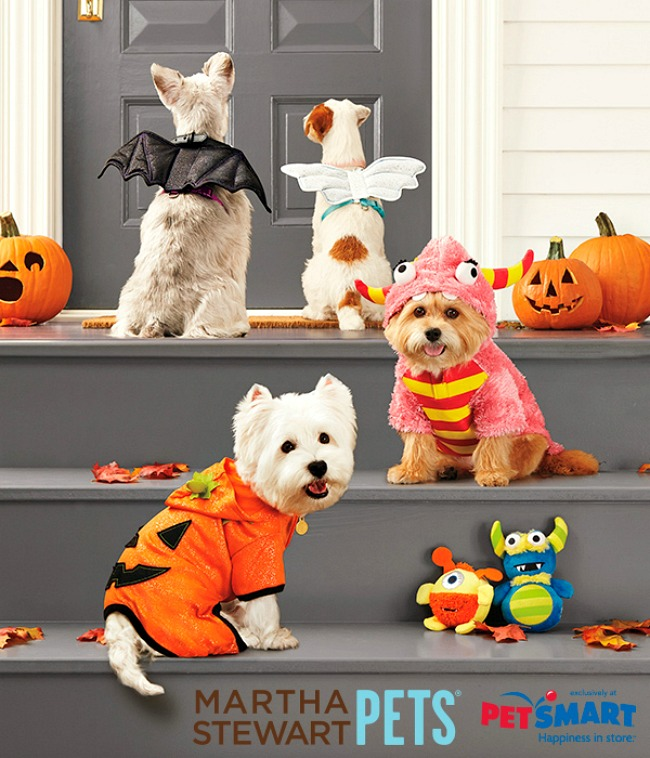 Martha Stewart Pets Halloween Costume Contest A Night Owl Blog