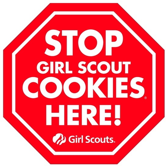 OH MY! Check out this list of over 25 amazing Girl Scout Cookie Recipes!!