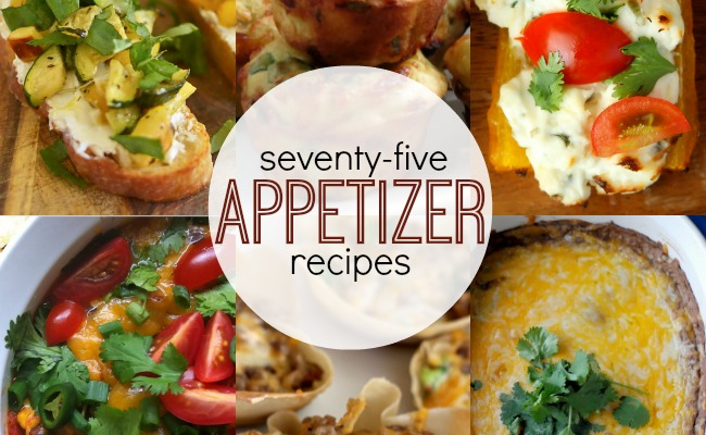 75+ Appetizer Recipes | anightowlblog.com