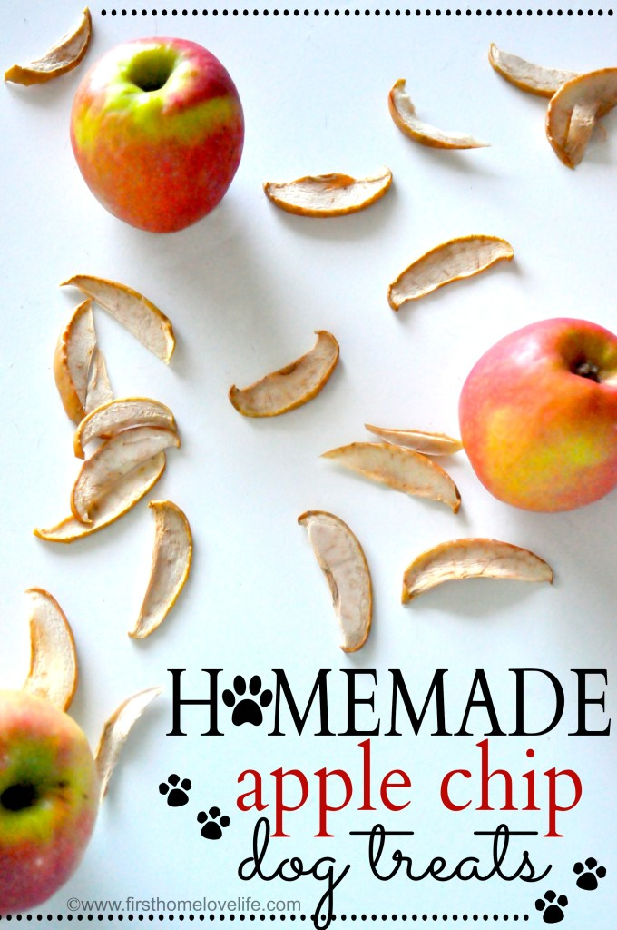 Homemade Apple Chip Dog Treats by First Home Love Life
