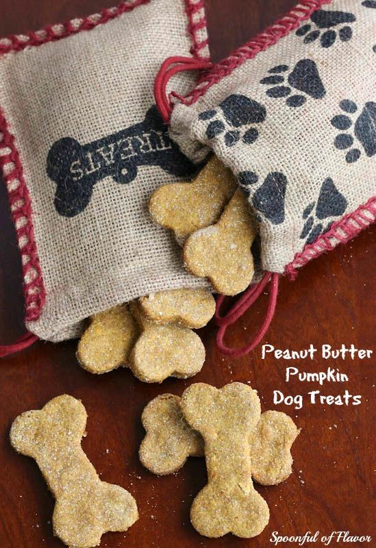 Peanut Butter Pumpkin Dog Treats by Spoonful of Flavor