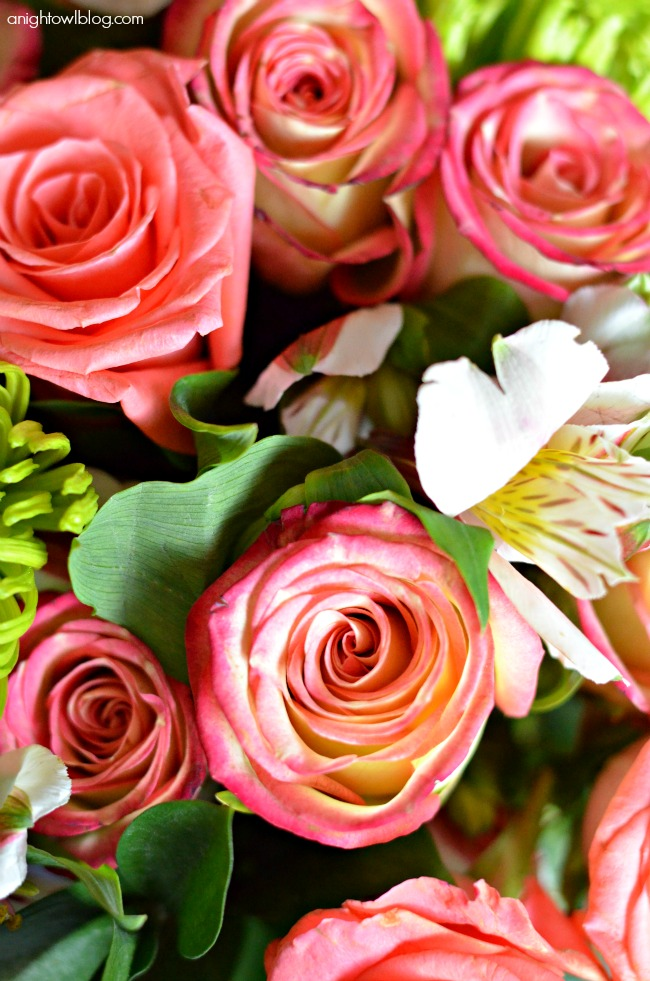 Deluxe All the Frills Bouquet - perfect gift for Mother's Day from ProFlowers!