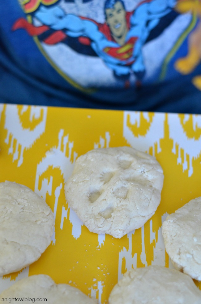 DIY Dinosaur Fossils - a quick and easy craft to do with your kids!