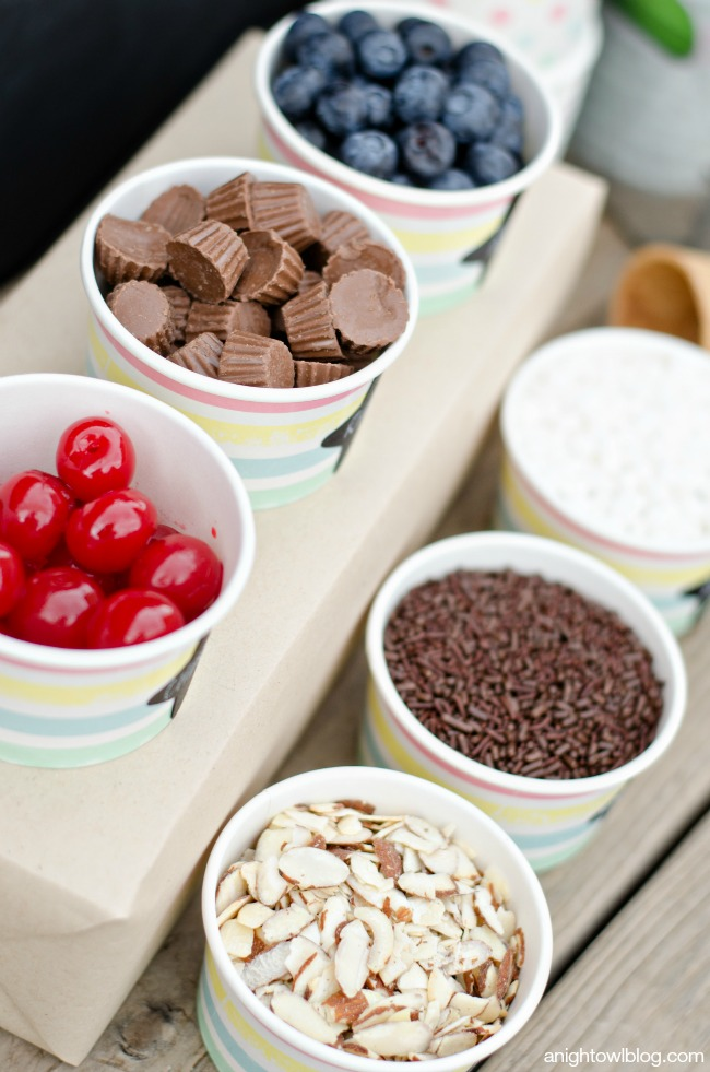 Yummy toppings for an easy Ice Cream Bar!