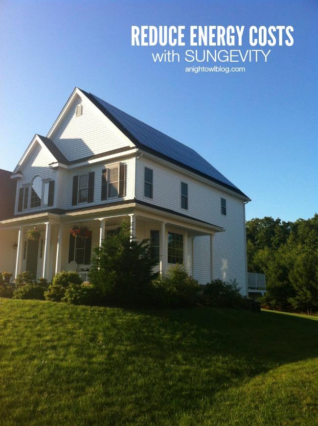 Reduce Energy Costs with Sungevity | anightowlblog.com
