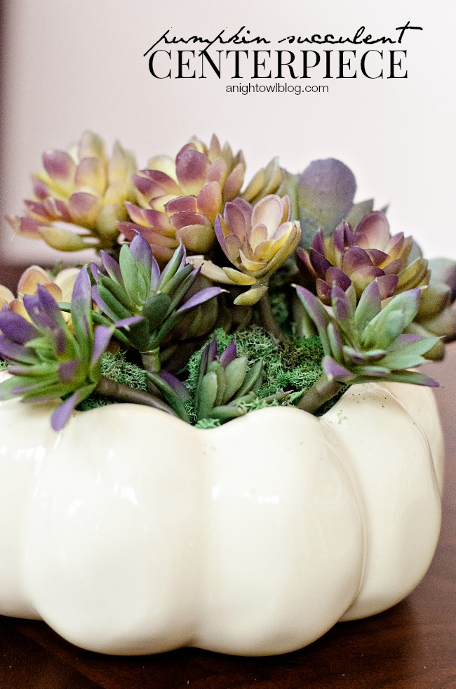 DIY Pumpkin Succulent Centerpiece