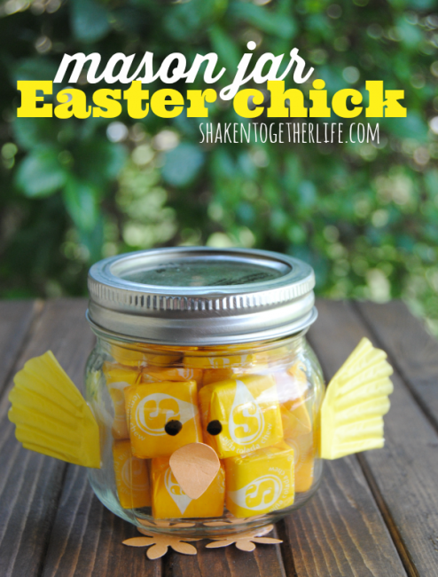 Mason Jar Easter Chick from Shaken Together!