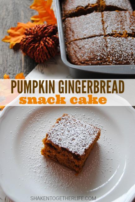 Pumpkin Gingerbread Snack Cake at Shaken Together